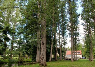 Vacances Chrétiennes : le parc